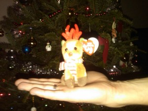 Beanie Baby That William Gave Me