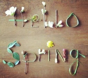 Hello Spring? Please?!