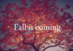 Hello September! Fall is Almost Here!